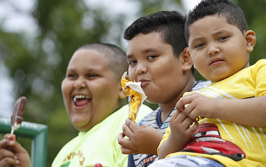 http://www.dossierpolitico.com/img/obesos.jpg